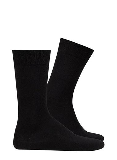 D'S Damat 3'lü Çorap Lacivert